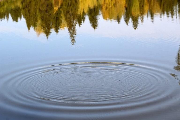 כל כך מתחשק לי לטבול בכנרת טבילה בטבע, להלכה - מגזין גלויה - הרבנית שרה סגל-כץ