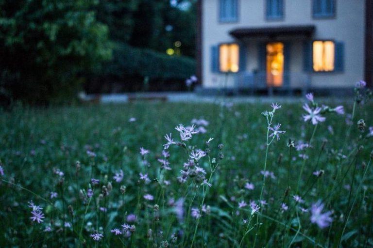 יחסי אישות שלום בית