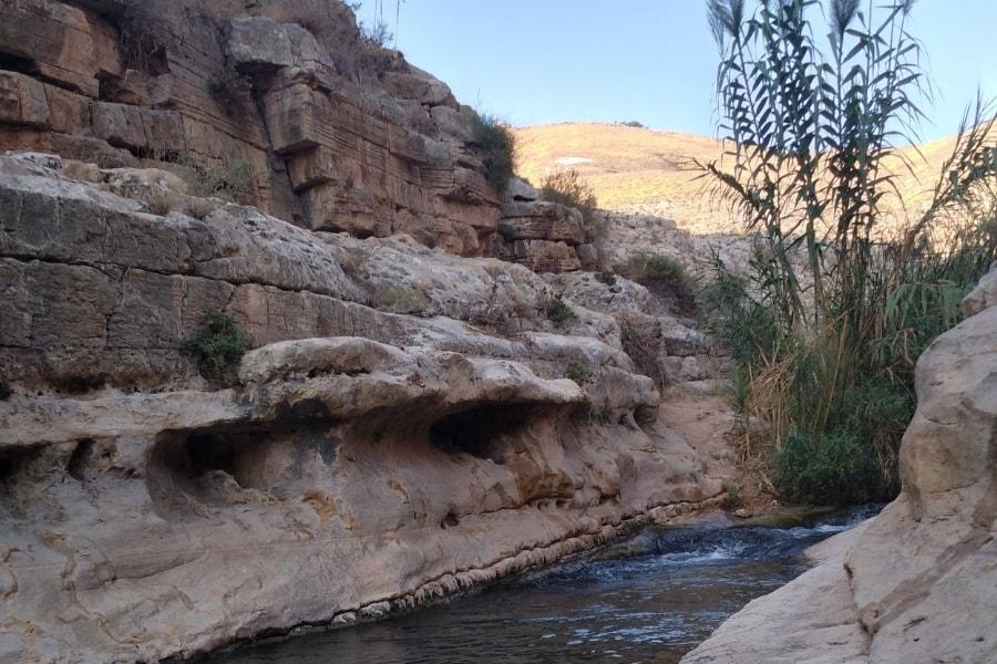 טבילות מנהג וטבילות מתחדשות - הרבנית שרה סגל-כץ מגזין גלויה